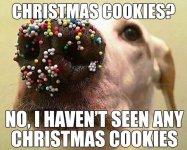 its_the_christmas_meme_season-17.jpg